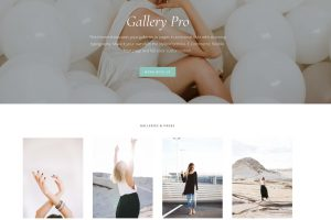 The Gallery Pro Theme